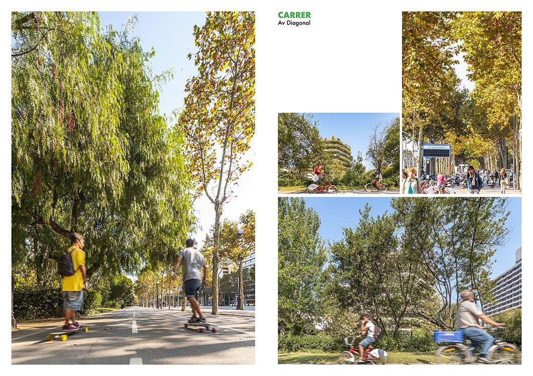 http://www.andresflajszer.com/files/gimgs/65_corredors-verds-collserola-montjuic-andres-flajszer-0016-750.jpg